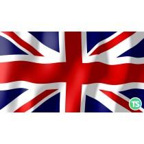 Lexical Approach e sviluppo del parlato in lingua inglese